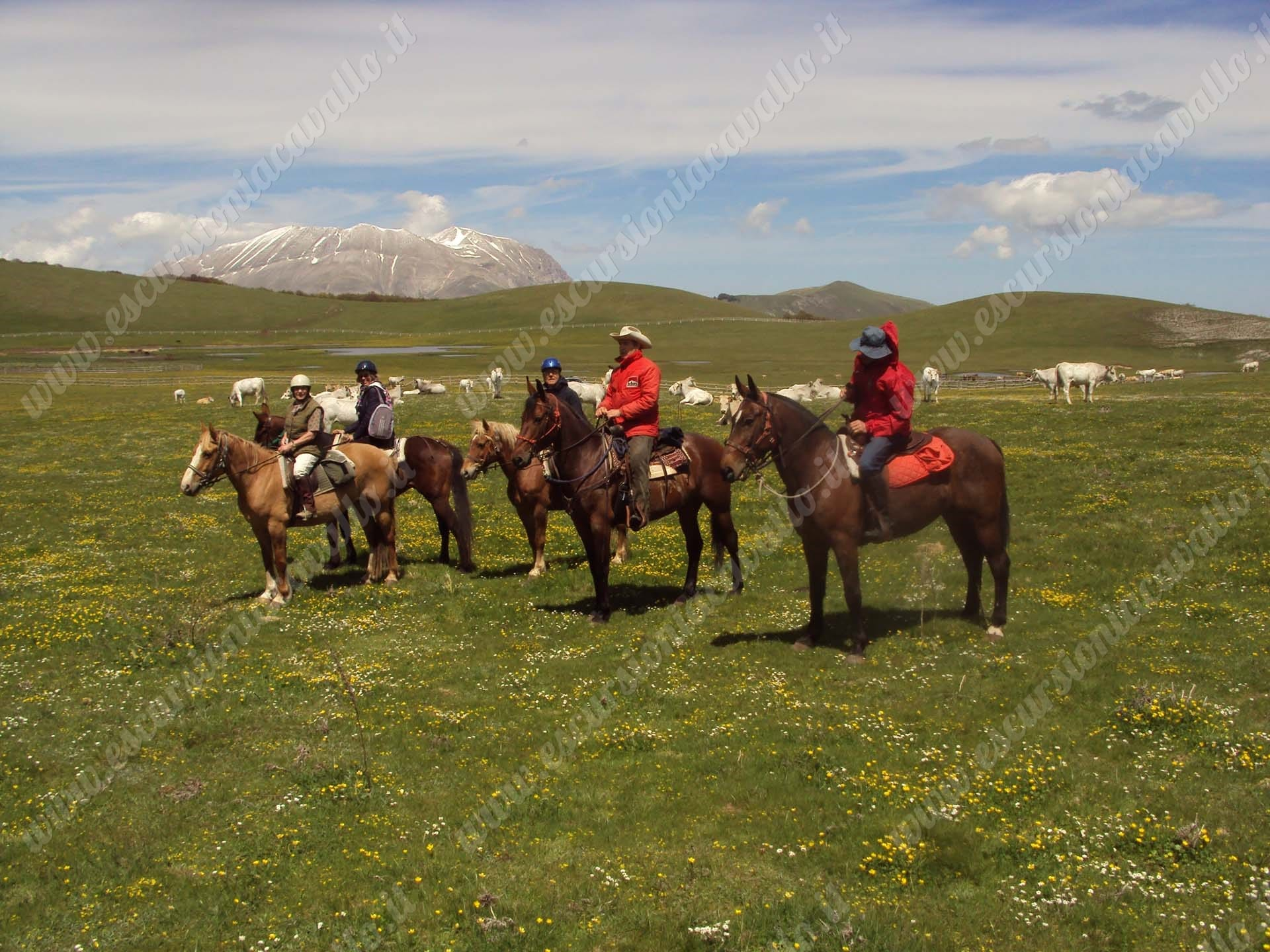 gruppo ai pantani di accumoli a cavallo
