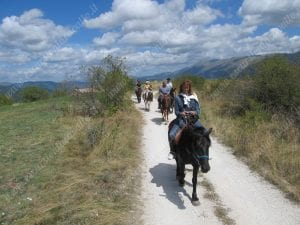 passeggiate di gruppo a cavallo