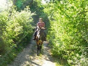 sentiero tra i boschi a norcia